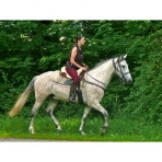 Horse Riding in Samoens, Morillon and Sixt